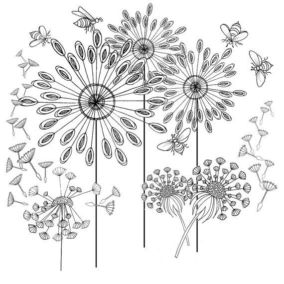 Dandelion coloring #10, Download drawings