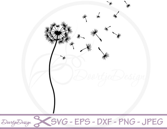 Dandelion svg #20, Download drawings
