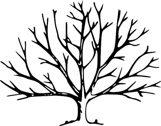 Dead Tree coloring #7, Download drawings
