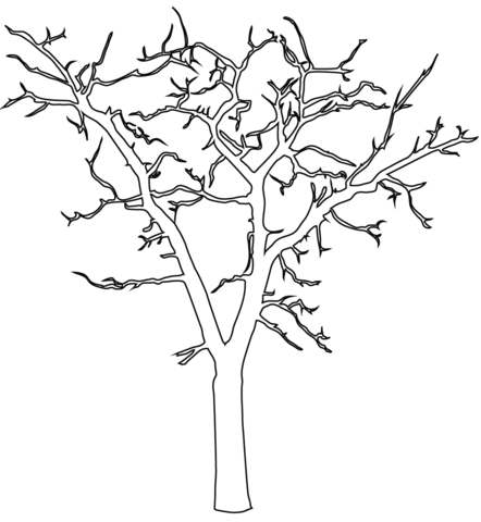 Dead Tree coloring #11, Download drawings