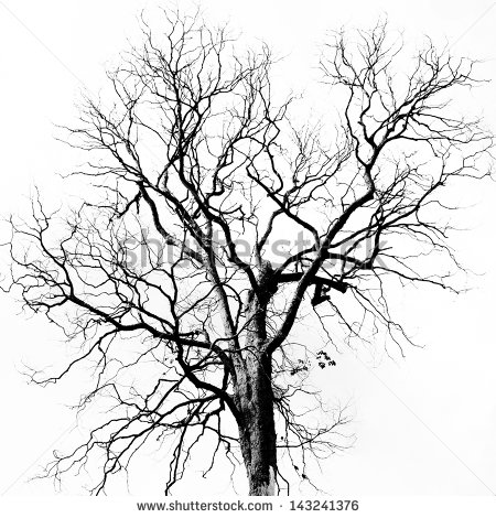 Dead Tree Dark Abstract clipart #16, Download drawings