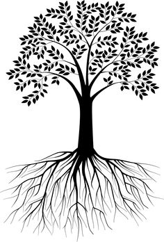 Tree Root svg #20, Download drawings
