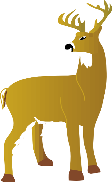 White-tailed Deer clipart #10, Download drawings