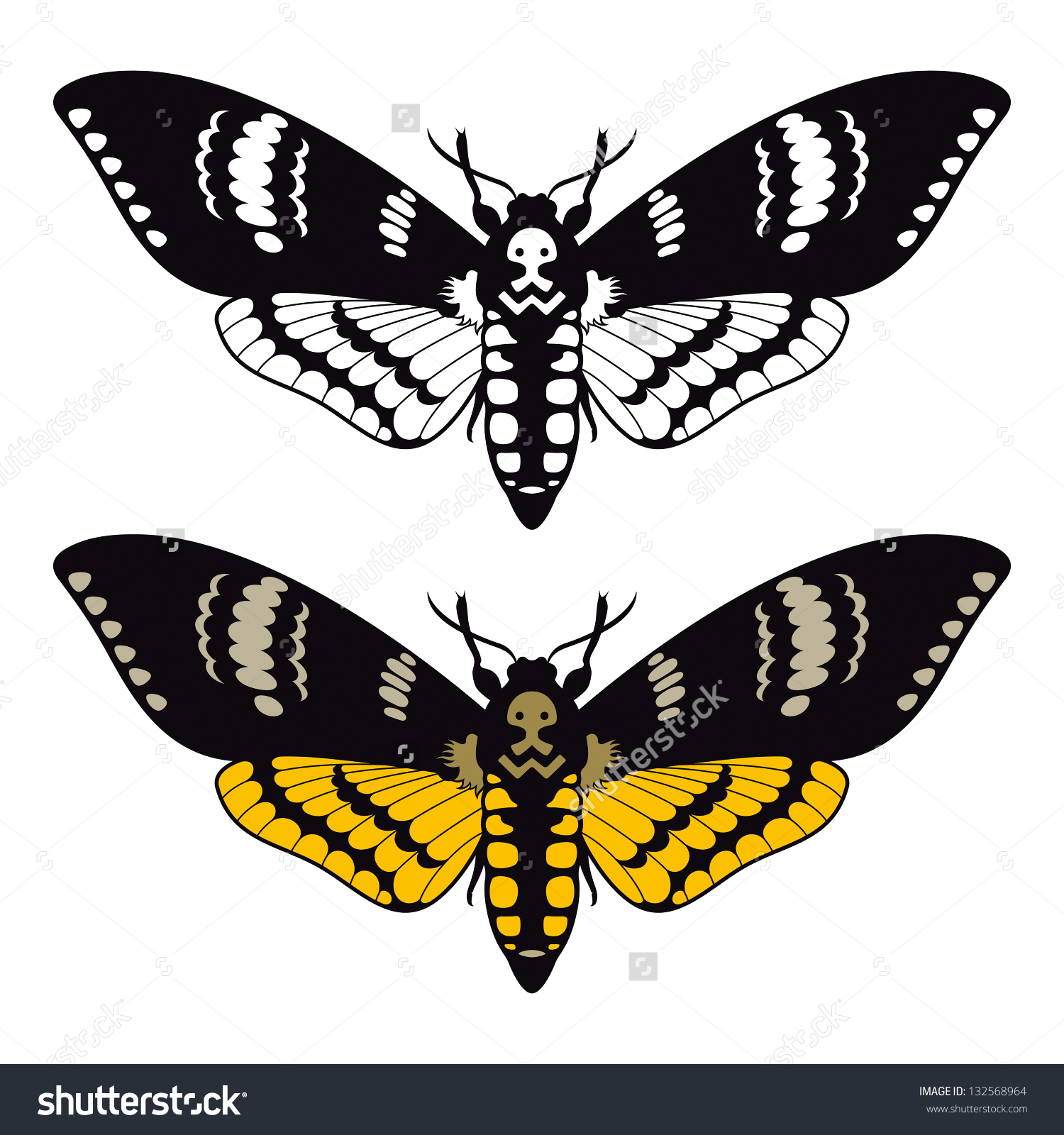 Deaths Head Moth clipart #2, Download drawings