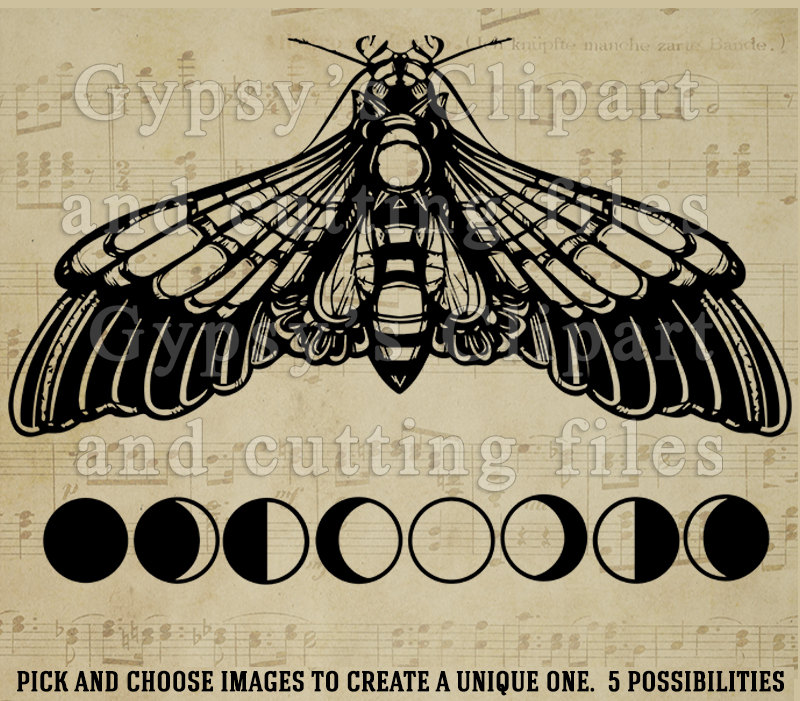 Moth svg #17, Download drawings
