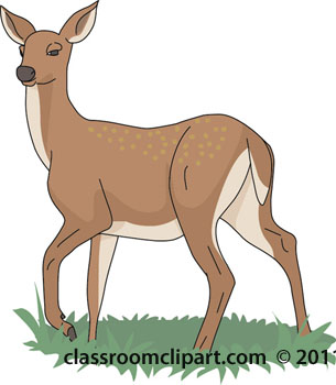 White-tailed Deer clipart #4, Download drawings