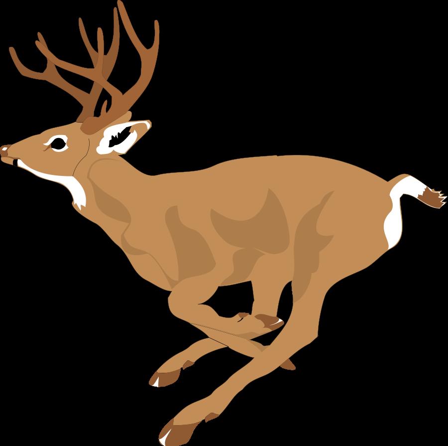 Red Deer clipart #19, Download drawings