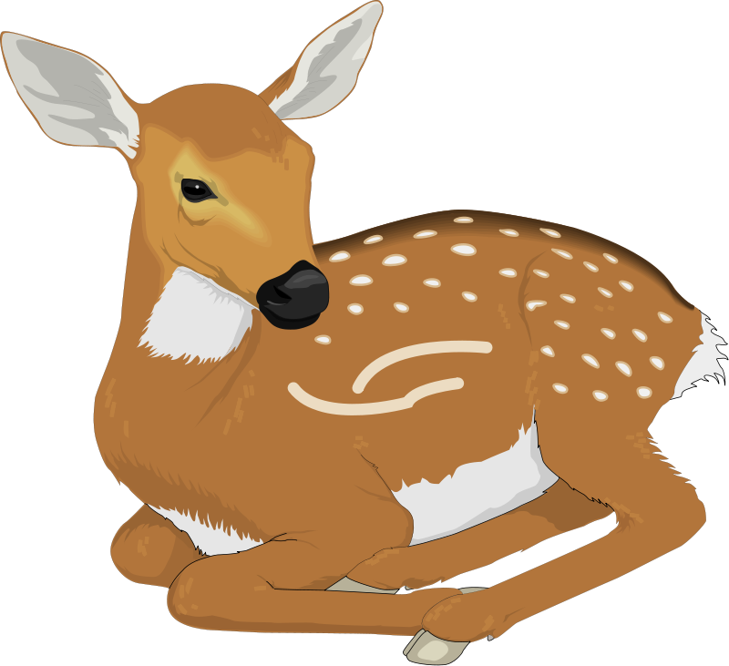 Deer clipart #6, Download drawings