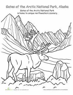 Denali National Park coloring #17, Download drawings