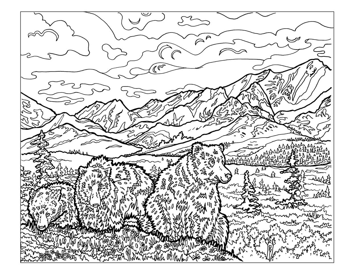 Denali National Park coloring #1, Download drawings