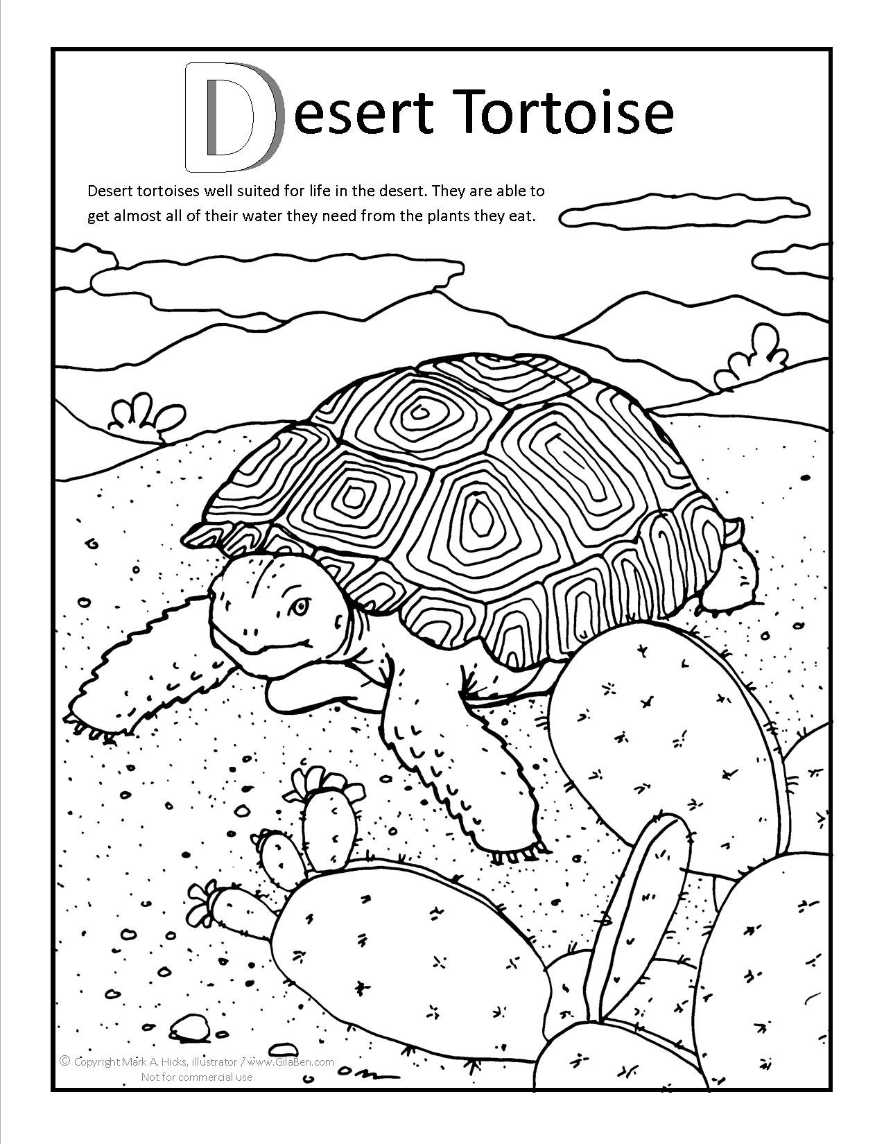 Desert coloring #9, Download drawings