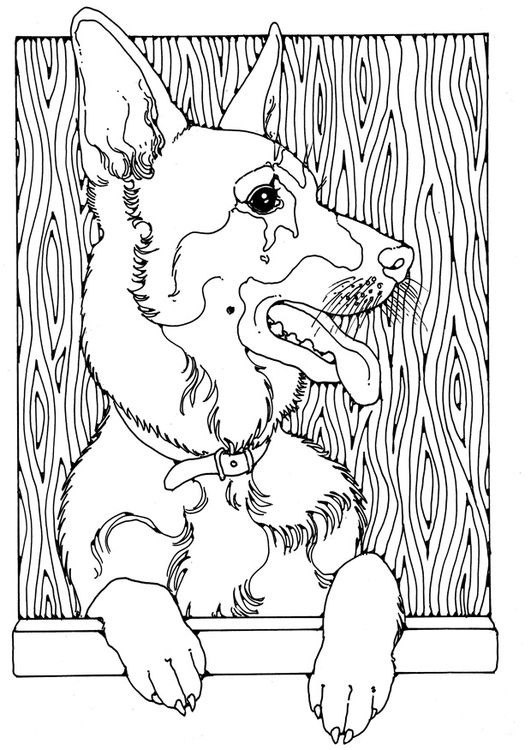 Deutscher Schaeferhund coloring #19, Download drawings