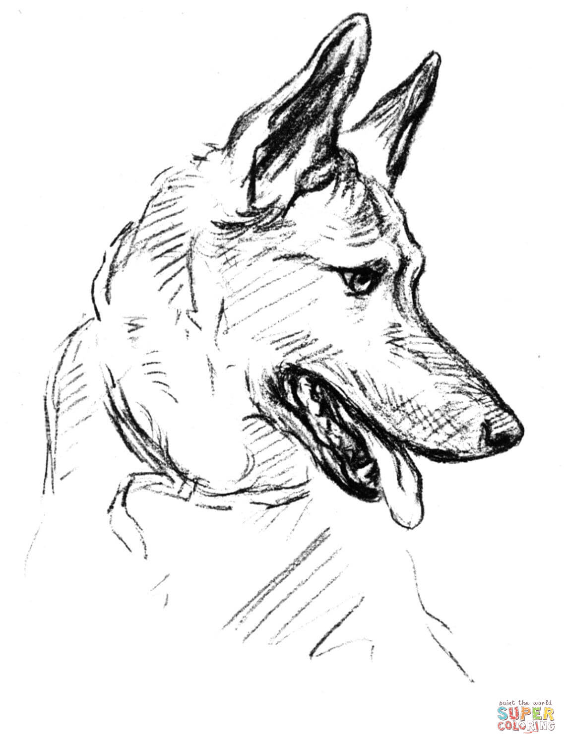 German Shepherd coloring #14, Download drawings