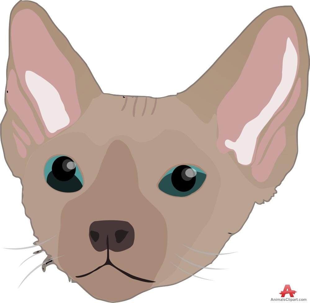 Devon Rex clipart #4, Download drawings