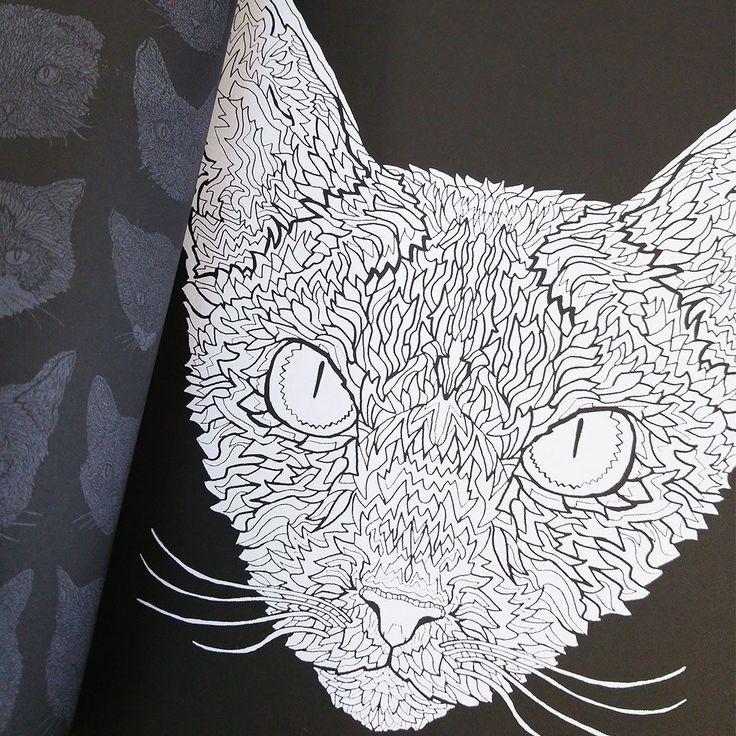 Devon Rex coloring #5, Download drawings