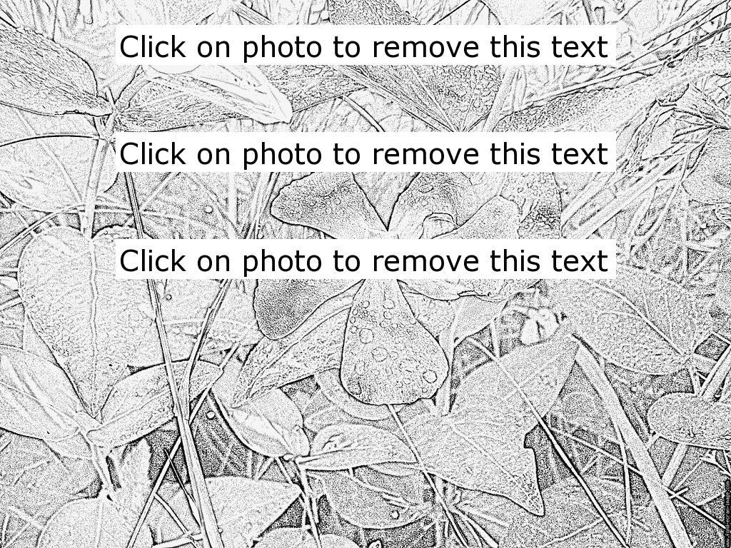 Dew coloring #2, Download drawings