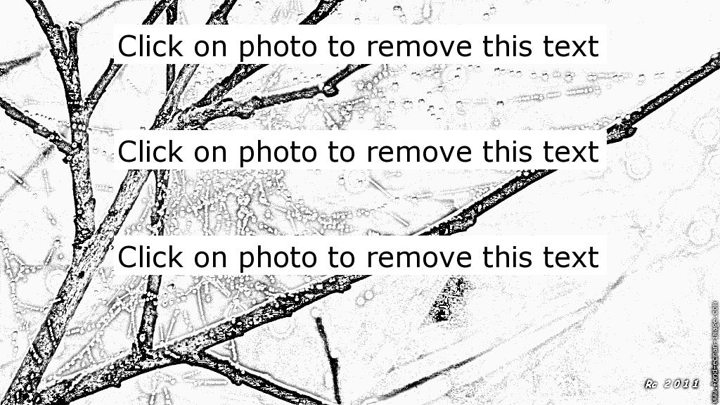 Dew coloring #4, Download drawings