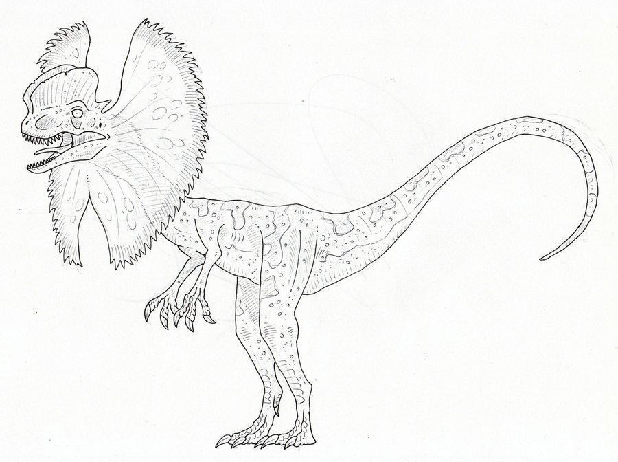 Dilophosaurus coloring #9, Download drawings
