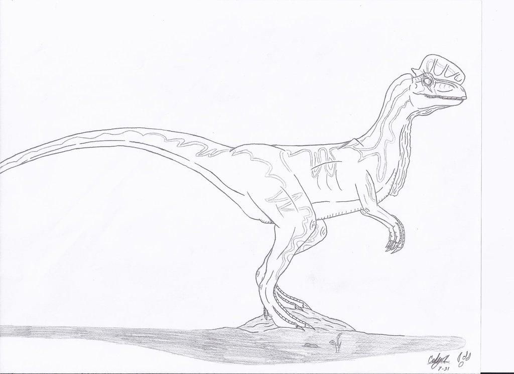 Dilophosaurus coloring #13, Download drawings
