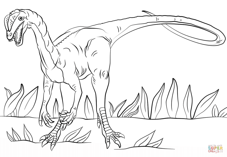 Dilophosaurus coloring #10, Download drawings