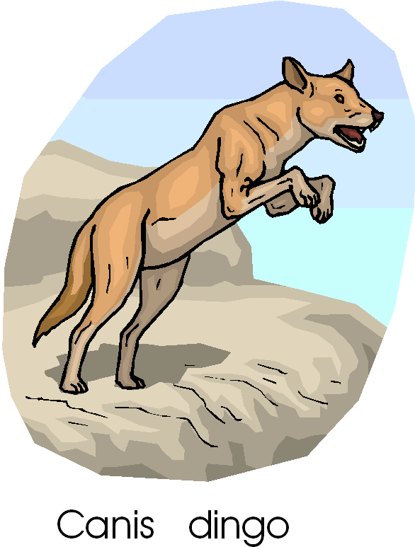 Dingo clipart #1, Download drawings
