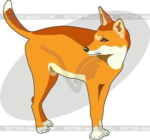 Dingo clipart #2, Download drawings