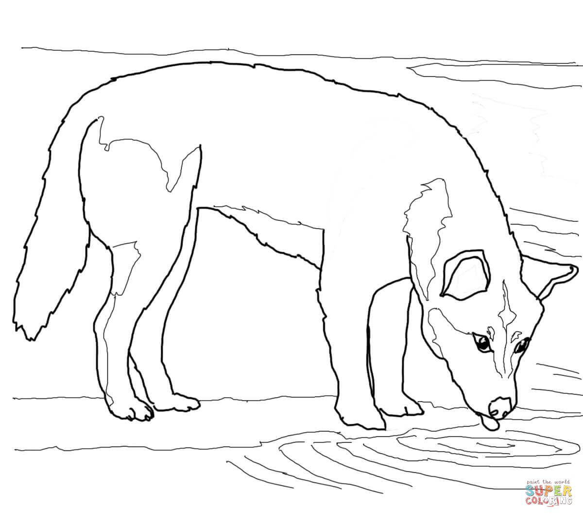 Dingo coloring #20, Download drawings
