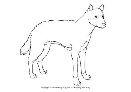 Dingo coloring #2, Download drawings