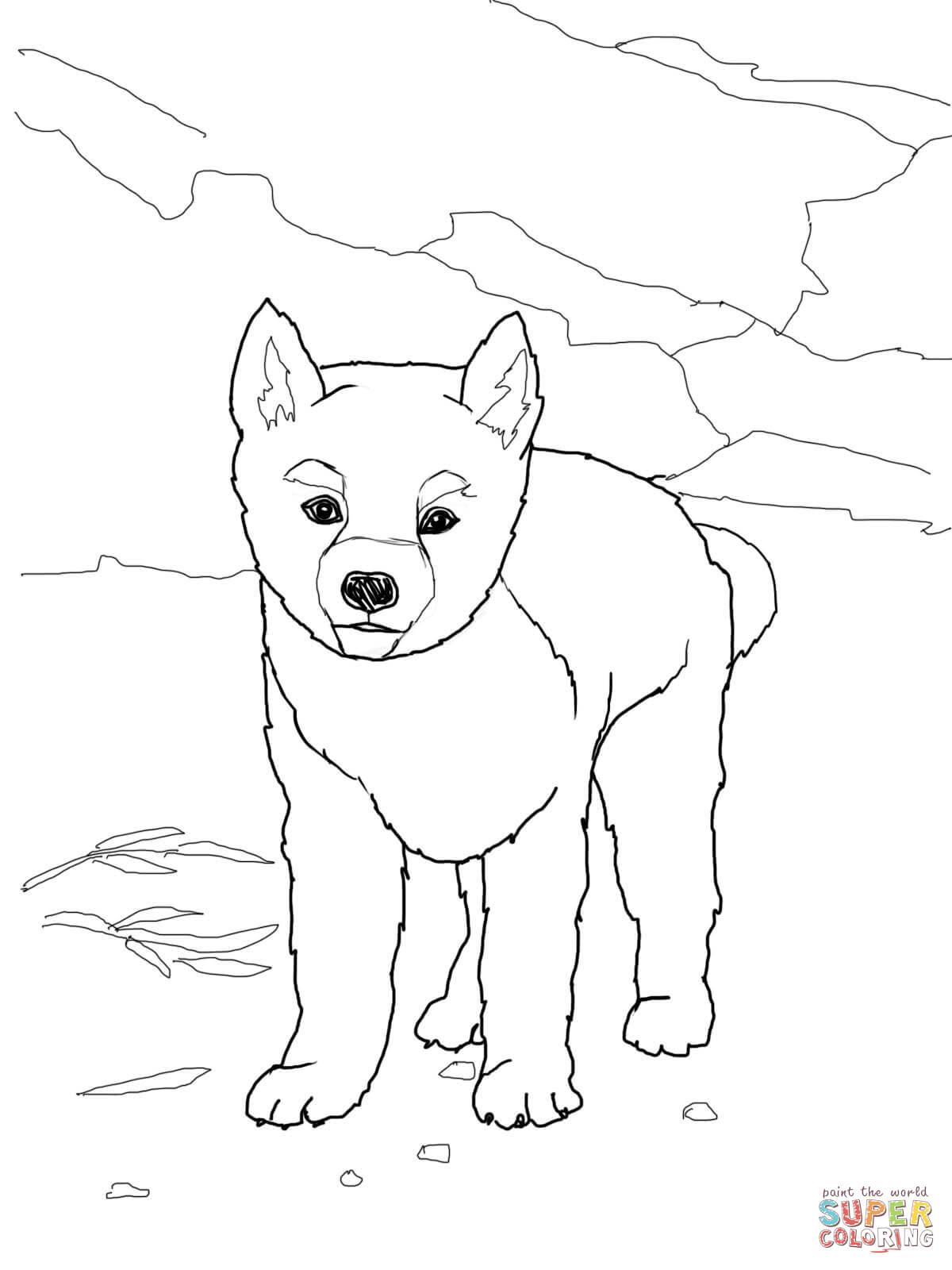 Dingo coloring #13, Download drawings