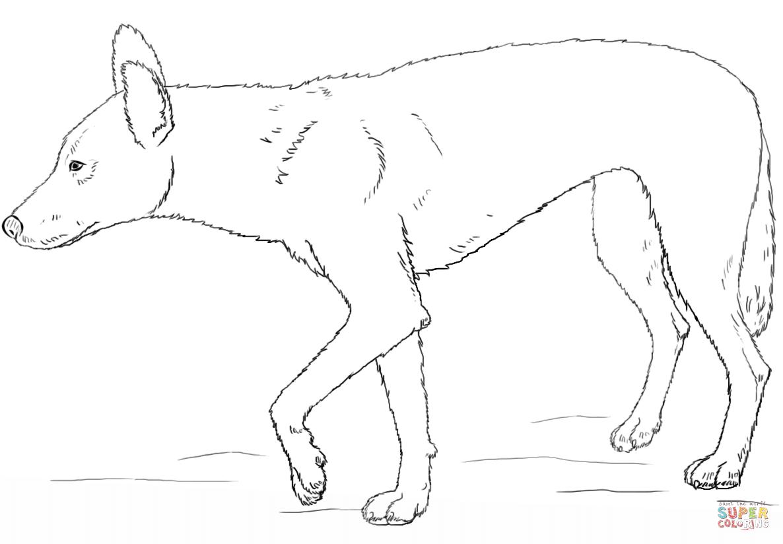 Dingo coloring #11, Download drawings