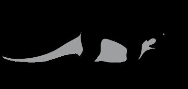 Dinosaur svg #10, Download drawings