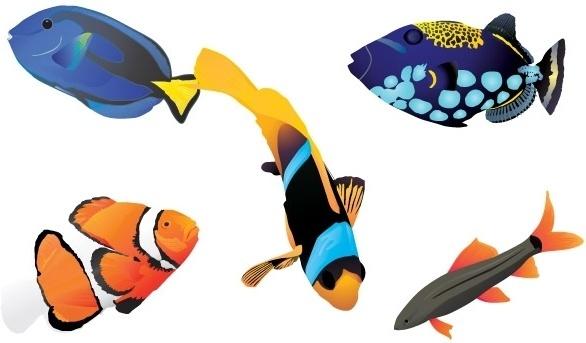 Discus Fish svg #14, Download drawings
