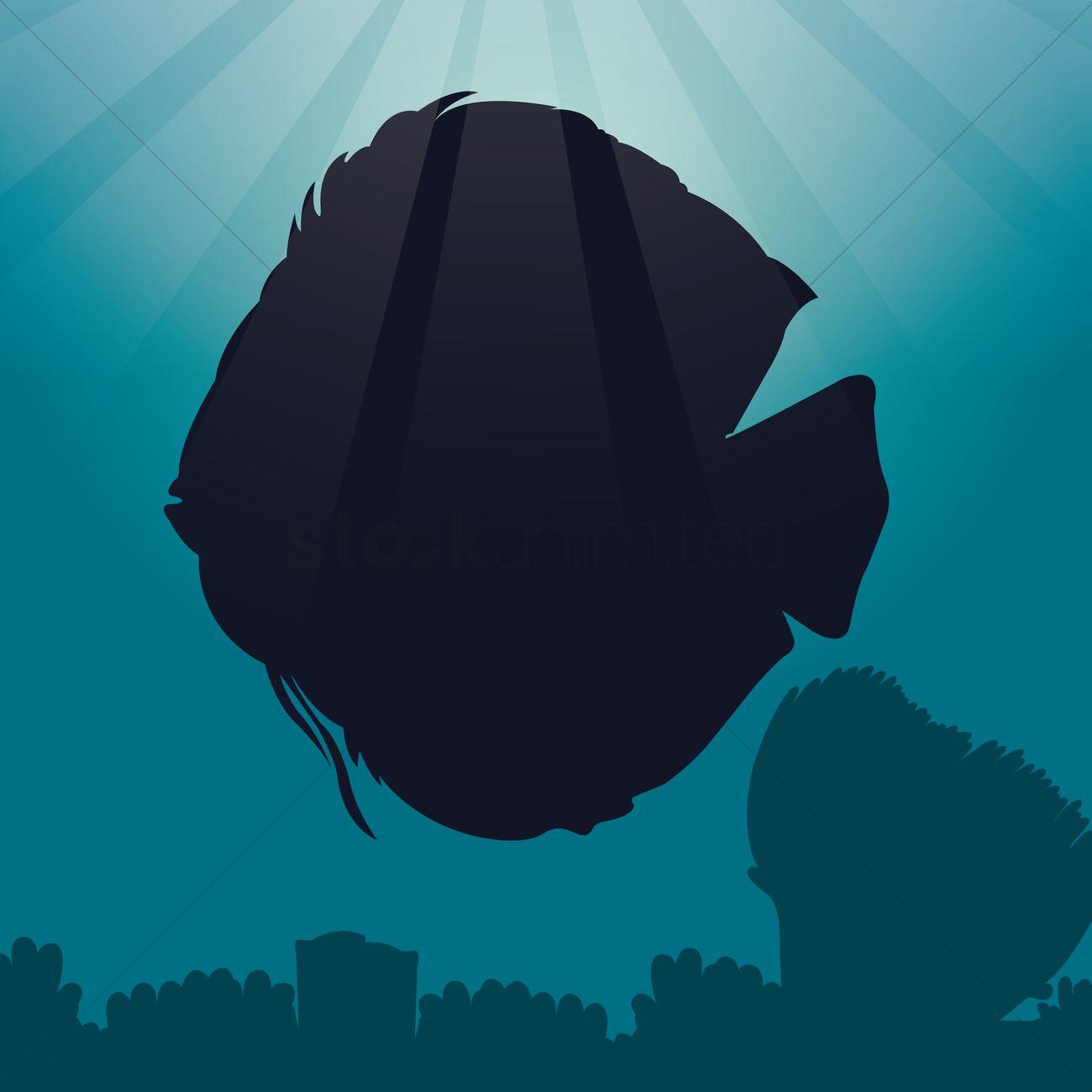 Discus Fish svg #8, Download drawings