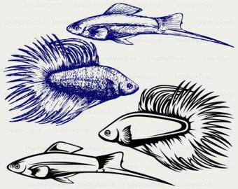 Discus Fish svg #11, Download drawings
