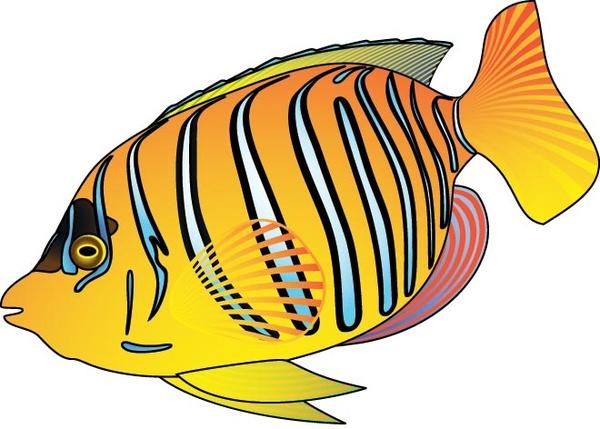 Discus Fish svg #1, Download drawings