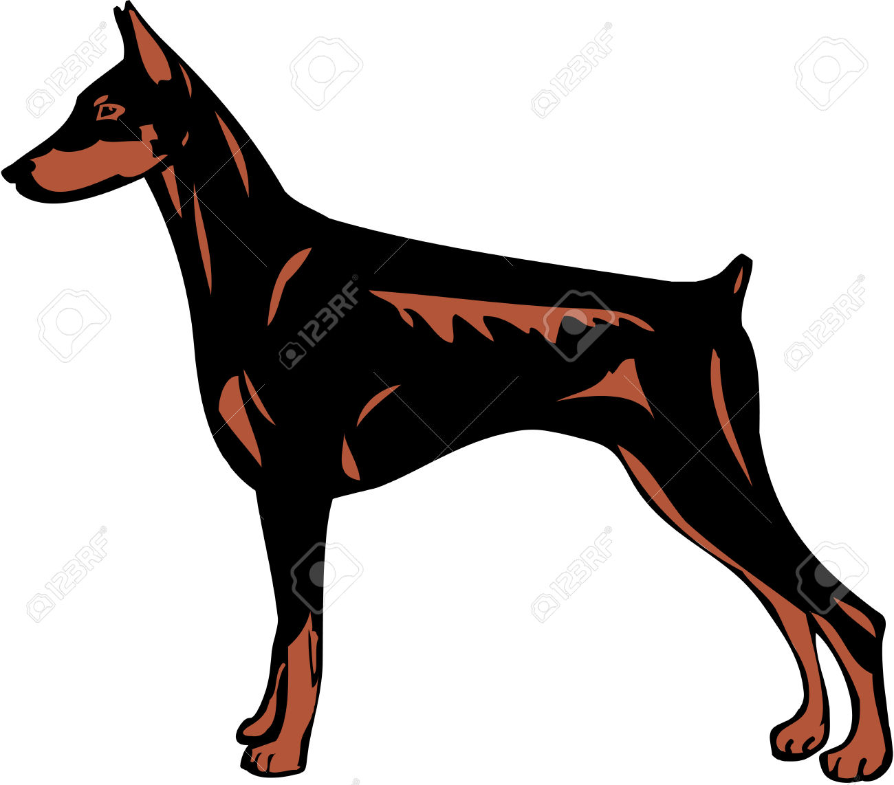 Doberman Pinscher clipart #17, Download drawings