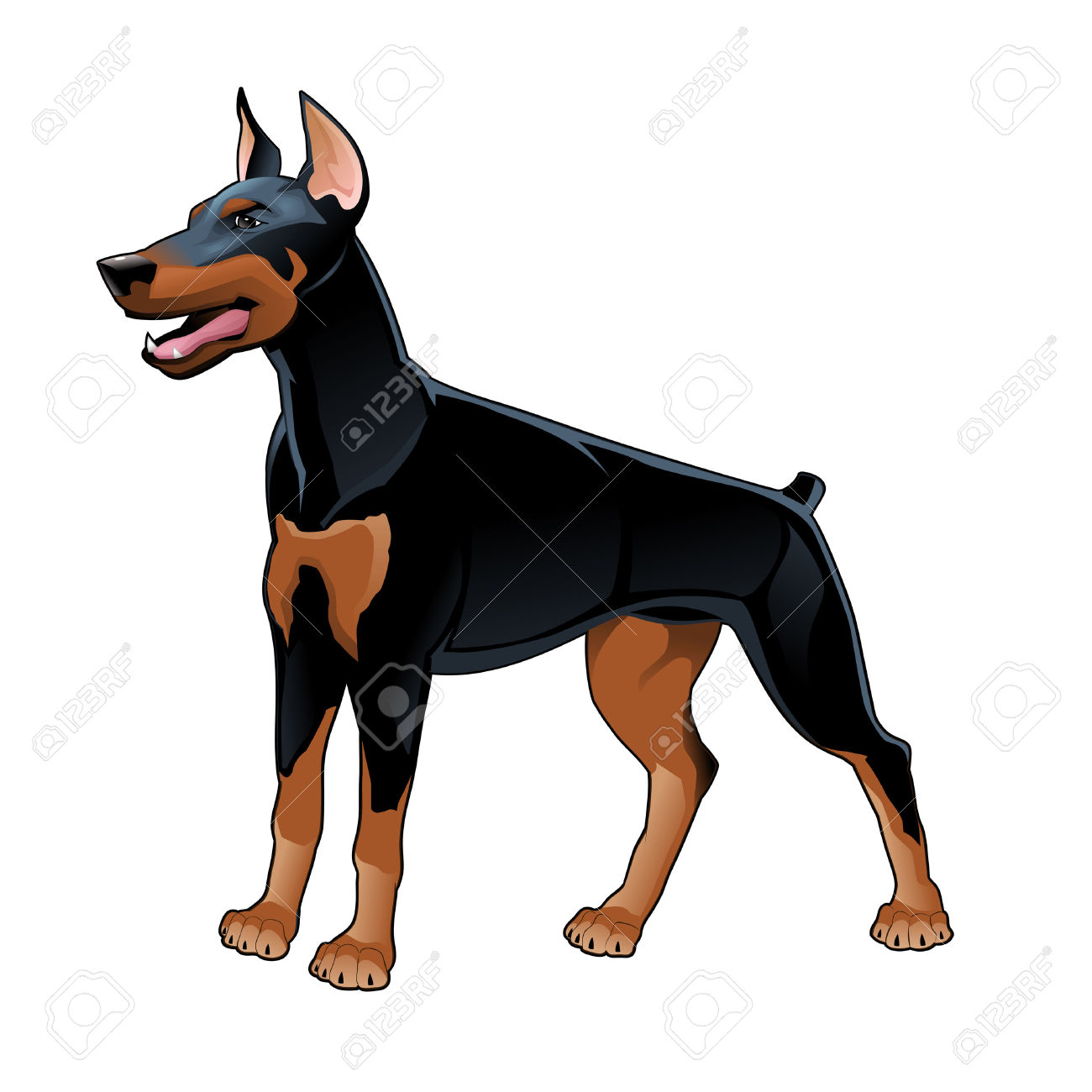 Doberman Pinscher clipart #4, Download drawings