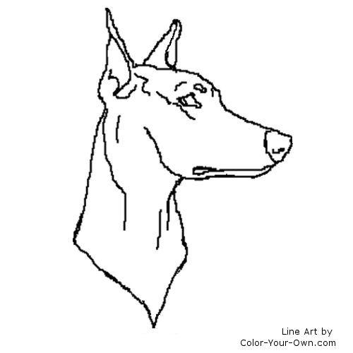 Doberman Pinscher coloring #17, Download drawings