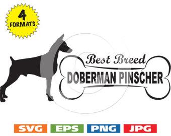 Doberman Pinscher svg #10, Download drawings