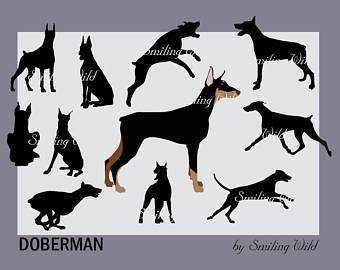 Doberman Pinscher svg #17, Download drawings