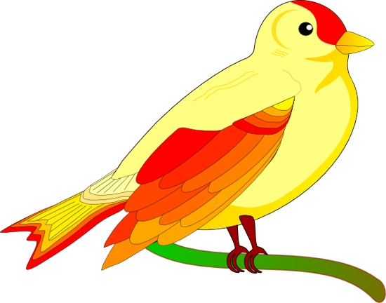 Doctor Bird clipart #4, Download drawings