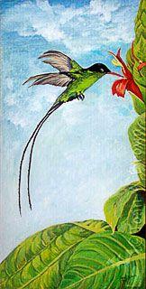 Doctor Bird clipart #13, Download drawings