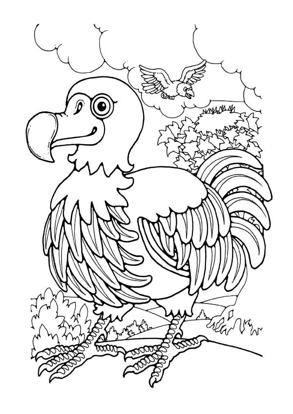 dodo coloring dodo coloring for free 2019
