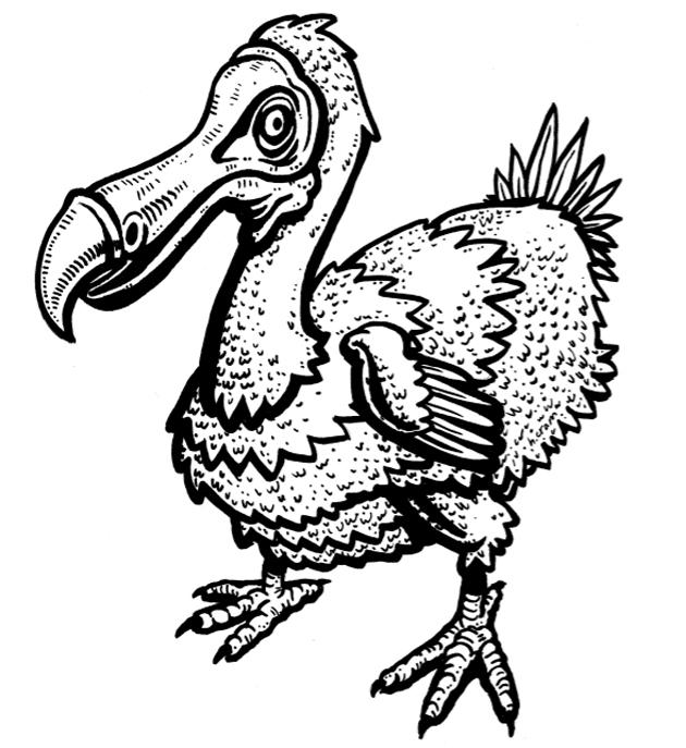 Dodo coloring #1, Download drawings