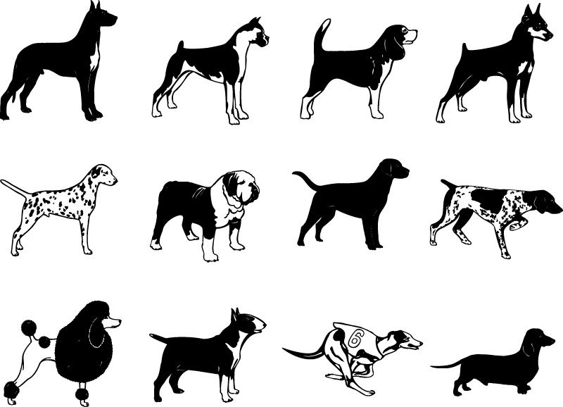 Canine svg #10, Download drawings