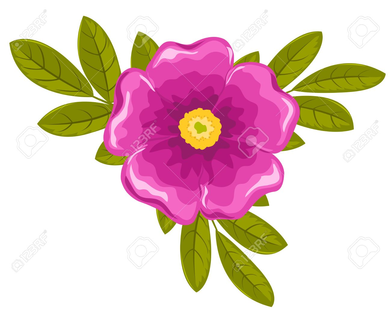Dogrose clipart #19, Download drawings