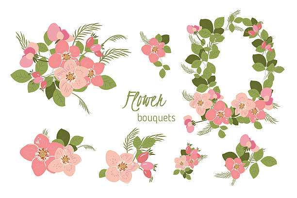 Dogrose clipart #9, Download drawings