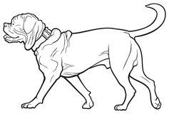 Dogue De Bordeaux clipart #15, Download drawings