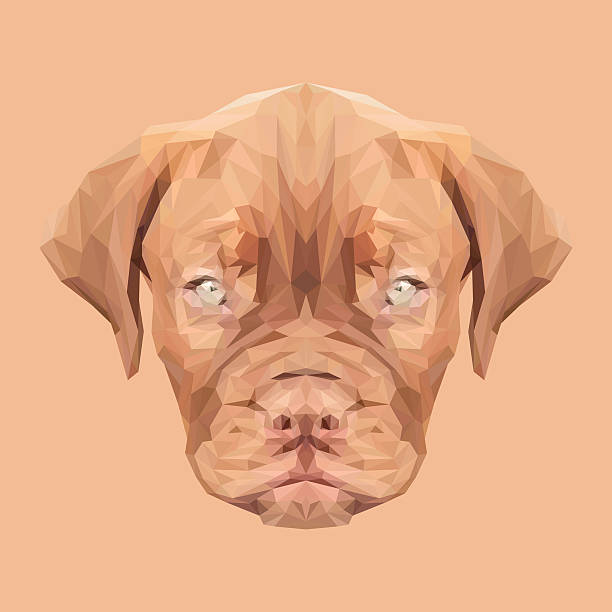 Dogue De Bordeaux clipart #16, Download drawings
