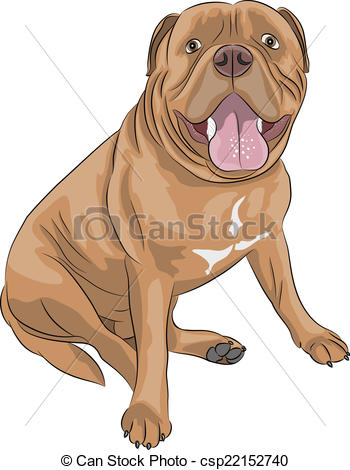 Dogue De Bordeaux clipart #7, Download drawings